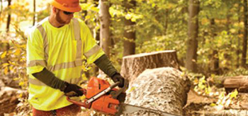 Cutting tree truck with chainsaw