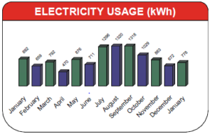 Bill Electricity Usage Sample